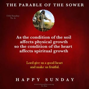 HOMILY FOR THE  FIFTEENTH SUNDAY IN ORDINARY TIME YEAR A
