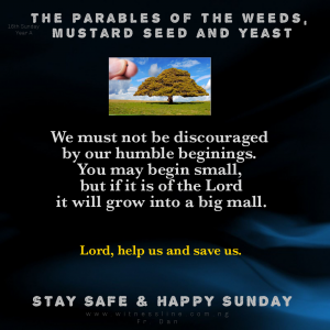 HOMILY FOR THE SIXTEENTH SUNDAY IN ORDINARY TIME YEAR A