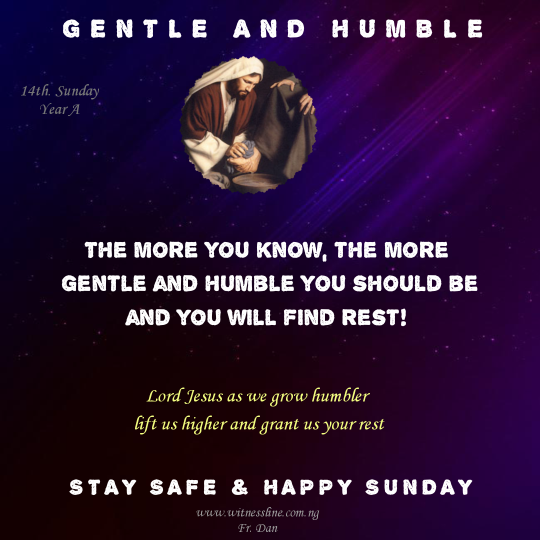 HOMILY FOR THE FOURTEENTH SUNDAY IN ORDINARY TIME YEAR A