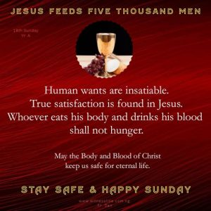 HOMILY FOR THE EIGHTEENTH SUNDAY IN ORDINARY TIME YEAR A,AUGUST 2, 2020
