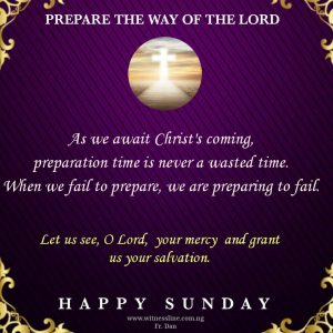 Homily for the Second Sunday of Advent Year B