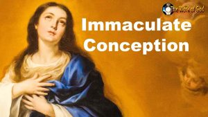 HOMILY FOR THE SOLEMNITY OF THE IMMACULATE CONCEPTION OF THE BLESSED VIRGIN MARY (DECEMBER 8)