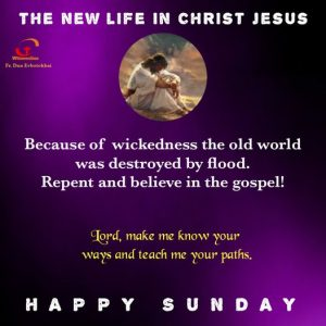 HOMILY FOR THE FIRST SUNDAY OF LENT YEAR B