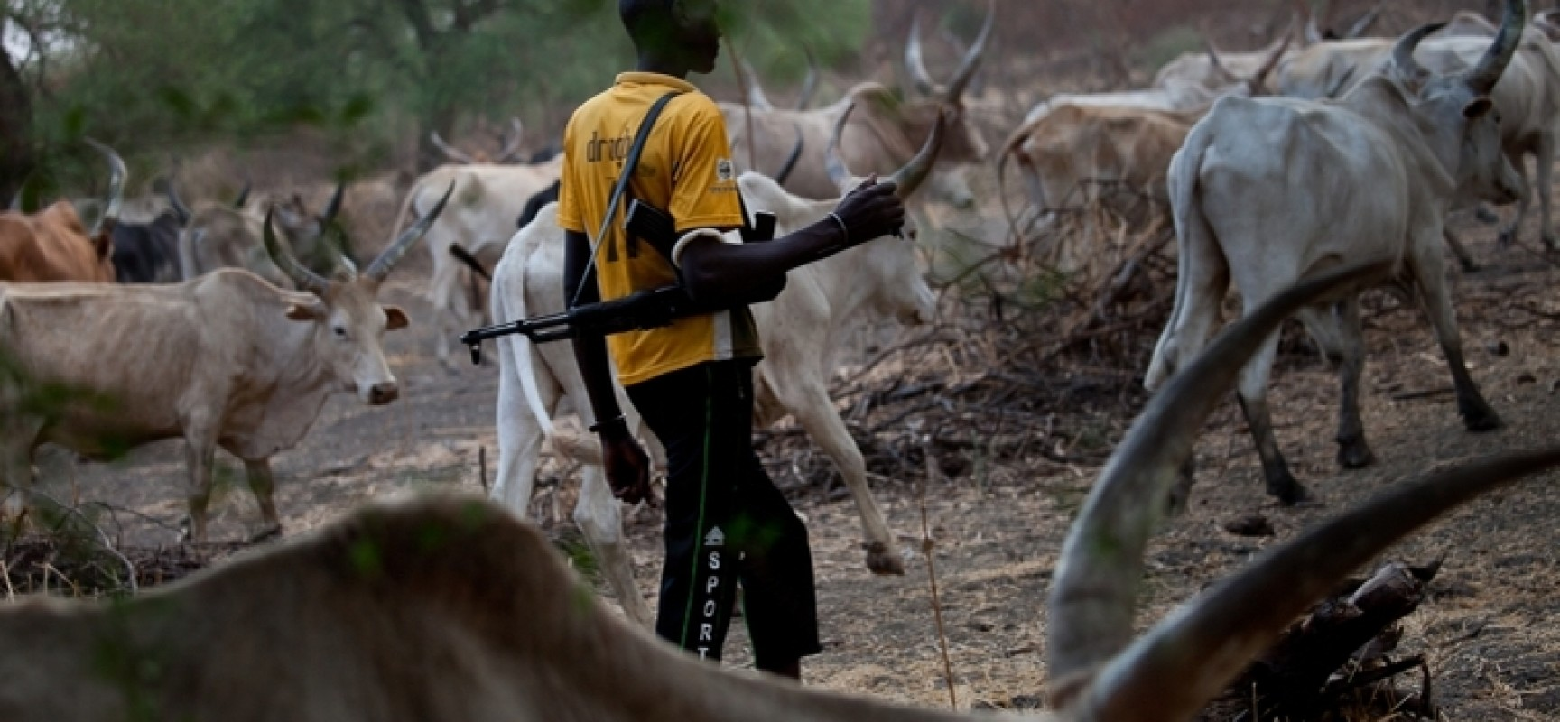 HERDSMEN VERSUS HEADS OF MEN: BENUE STATE TODAY AND 'X' TOMORROW