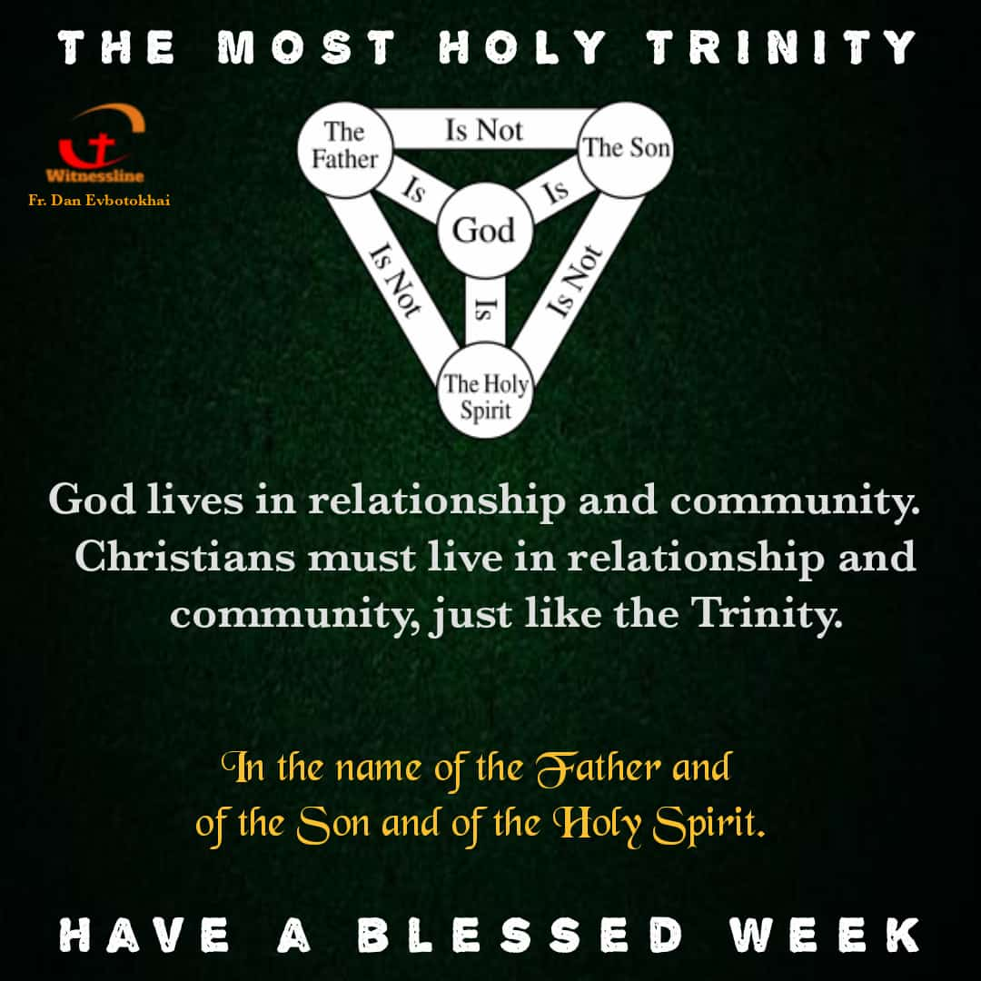 HOMILY FOR THE SOLEMNITY OF THE HOLY TRINITY YEAR B (30/5/2021)