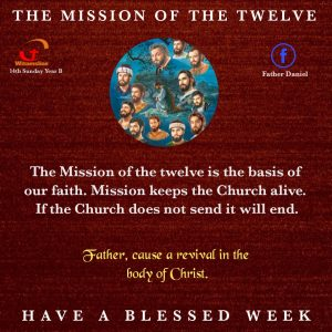 HOMILY FOR SUNDAY THE FIFTEENTH SUNDAY IN ORDINARY TIME YEAR B (11/7/2021)