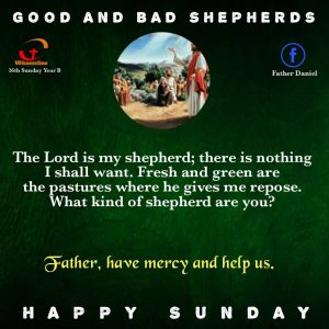 HOMILY FOR THE SIXTEENTH SUNDAY IN ORDINARY TIME – YEAR B (JULY 18, 2021)